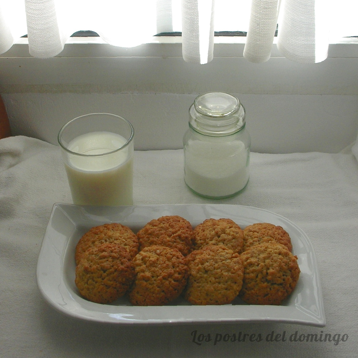 galletas de avena con semillas