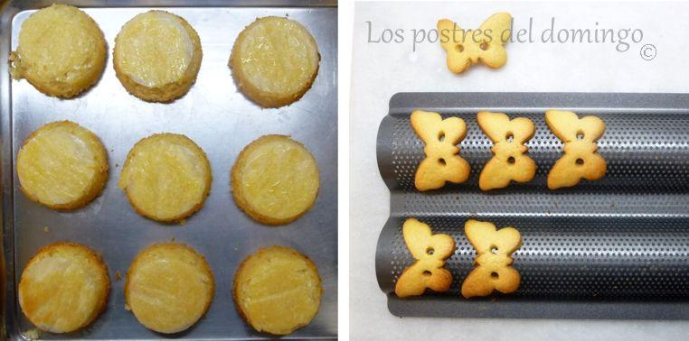 pasteles de requesón y limón_galletas